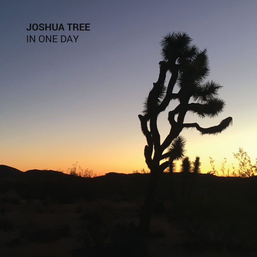Visit Joshua Tree National Park In One Day